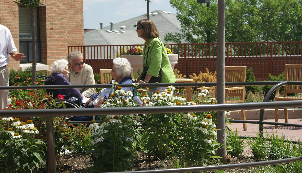 St. Patrick's Therapy Garden